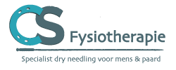 CS fysiotherapie door Caroline Schellekens